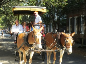cover photo carriage ride